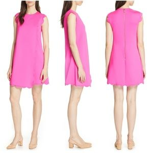 TED BAKER LONDON Fresh Start Scalloped Swing Dress